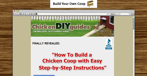 Learn To Build Your Own Chicken Coop