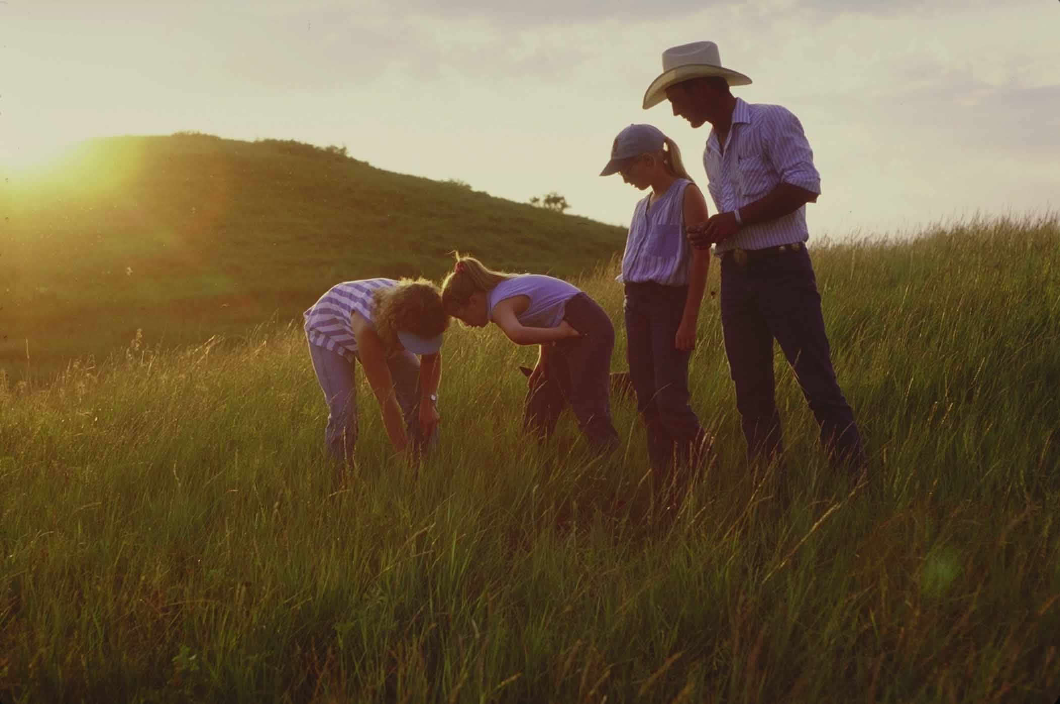 Off-grid homesteading