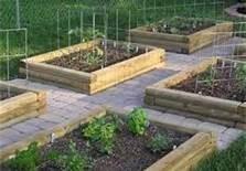 002 garden